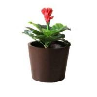 Chậu trồng hoa miệng tròn composite