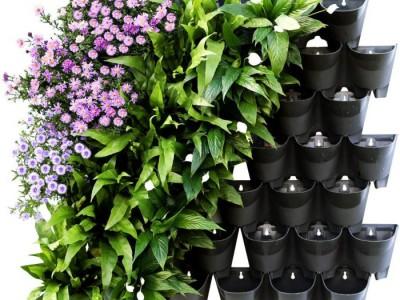 Tạo một khu vườn đứng trong nhà bằng chậu hoa composite treo tường