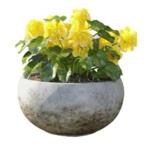 Chậu hoa composte phong cách cổ điển